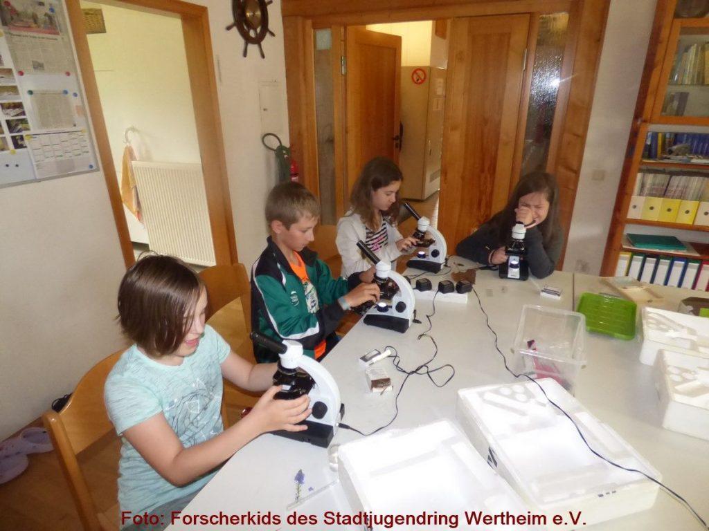 Die Forscherkids des Stadtjugendring Wertheim e.V. bieten im ersten Schulhalbjahr für interessierte Schulkinder wieder vielfältige Angebote.